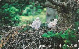 RARE TC JAPON / 110-164179 - ANIMAL - Oiseau Rapace AIGLE / Poussins Au Nid - EAGLE Bird JAPAN Free Phonecard / BE 5694 - Aquile & Rapaci Diurni