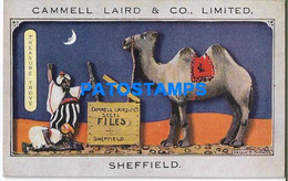 167988 PUBLICITY COMMERCIAL CAMMELL LAIRD & CO CIGARETTES POSTAL POSTCARD - Advertising