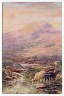 BEN LEDI -  Tuck Oilette 3151 - Stirlingshire