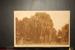 CP, 93, LIVRY-GARGAN Sanatorium De L'Abbaye Avenue Turgot, Une Vue Du Parc, RARE - Livry Gargan