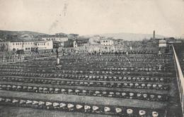 """Cartolina - Postcard / Non Viaggiata - Unsent / Cimitero Militare Italiano """" Enrico Toti """" Monfalcone. - War Cemeteries"""