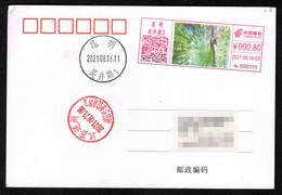 China KunMing Postage Machine Meter: Animal Kingdom,Beautiful Yunnan, Green Peacock - Lettres & Documents