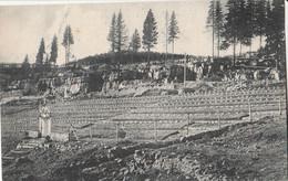 Cartolina - Postcard / Non Viaggiata - Unsent / Cimitero Militare  Austriaco - Val Di Campomulo. - Cementerios De Los Caídos De Guerra