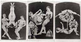 Lot De 3 CPA - Rares Dessins Pornographiques Sur Le Thème Du Cirque (7957 ASO) - 1900-1949