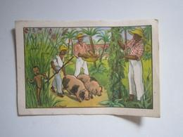 1 Image Anciennes REUNION éditions éducatives BON POINT  9 X 6,5 Cm Env - Andere