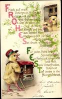Gedicht Lithographie Glückwunsch Ostern, Küken, Entschwunden Ist Nun Winterkleid - Pasen