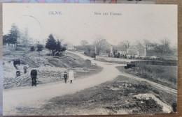 OLNE - RARE CPA - SUR LES FOSSES - TRES BELLE ANIMATION- EDITION CHEFNEUX 1910 - Olne