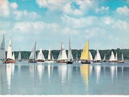 Lac De Virelles, Les Régates - Chimay
