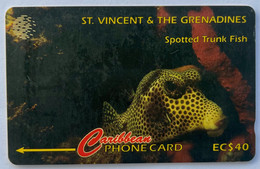 Spotted Trunk Fish - Saint-Vincent-et-les-Grenadines