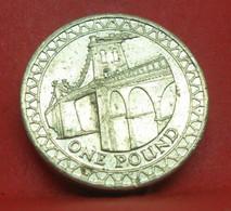1 Pound 2005 - TTB - Pièce De Monnaie Collection Grande Bretagne - N19948 - 1 Pound