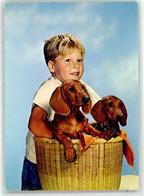 53036313 - Kind - Dogs