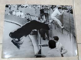 "Photo Semmonay Beaucaire  Taureau Camargue ""moulinois"" Manade Et Arenes Arles à Determiner , Razeteur Doulaud - Non Classificati"