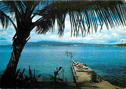 Martinique - Les Trois Ilets - Auberge De L'Anse Mitan - Quai - CPM - Voir Scans Recto-Verso - Otros