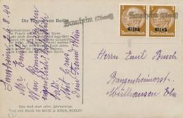 """Alsace HINDENBURG 3pf Paire  Obl """" SAUSCHEIM ( OBERELS )"""" Griffe Linéaire Sur Carte Postale > Mulhouse - Alsace Lorraine"""