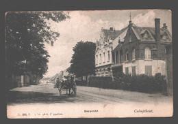 Kalmthout / Calmpthout - Dorpzicht - Geanimeerd - Paard En Kar - Kalmthout