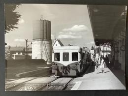 Photographie Originale De J.BAZIN:Petites Lignes De L'Ain Et Ligne CFF De Divonne  Les Bains à Nyon: OYONNAX  En 1960 - Trenes