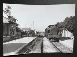 Photographie Originale De J.BAZIN:Petites Lignes De L'Ain Et Ligne CFF De Divonne-les- Bains THOIRY En  1960 - Trenes