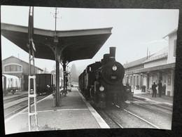 Photographie Originale De J.BAZIN:Petites Lignes De L'Ain Et Ligne CFF De Divonne-les- Bains :départ DeDivonnne En  1960 - Trenes