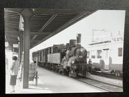 Photographie Originale De J.BAZIN:Petites Lignes De L'Ain Et Ligne CFF De Divonne-les- Bains  En Gare De NYON Qu'en 1956 - Trenes