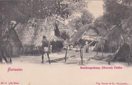 485413Suriname, Boschnegerkamp (Marous) Cottica Rond 1900. - Surinam