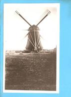 Mijnsheerenland West Molen Foto/repro ML2573 - Windmills