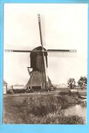 Mijnsheerenland Molen ML2371 - Windmills