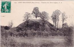 79 - Deux Sevres -  CHEF BOUTONNE - Tumulus De La Motte Tuffeau - Chef Boutonne