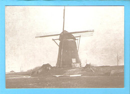 Hillegom Molen Foto/repro ML2819 - Other