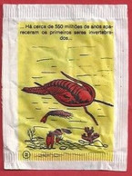 PT.- Suikerzakje. DELTA. HA CERCA DE 550 MILHOES DE ANOS RECERAM OS PRIMEIROS SERES INV.... Zucker Azucar Sucre Zucchero - Azúcar