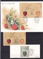 D213 / LOT N° 4535 TIMBRE ENVELOPPE 1ER JOUR - Collections
