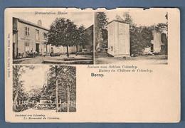 Cpa Borny Restauration Blaise, Denkmal, Ruinen Schloss Colombey - édition E Gregoire - Autres Communes