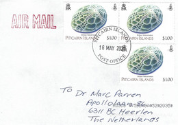 Pitcairn 2021 Adamstown Keeled Heart Urchin Brissus Latecarinatus Echinoderm Marine Invertebrate Cover - Islas De Pitcairn