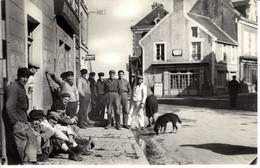 14 Calvados Grancamp Les Bains Lieu Dit Le Musoir Animée Homme Beret Maison Chien - Other Municipalities