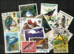 OISEAUX/BIRDS. Selection Joli Lot De 24 Timbres Oblitérés, Thème OISEAUX,  1 ère Qualité . Lot # 1 - Kilowaar (max. 999 Zegels)