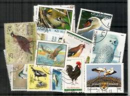 OISEAUX/BIRDS. Selection Joli Lot De 24 Timbres Oblitérés, Thème OISEAUX,  1 ère Qualité . Lot # 4 - Kilowaar (max. 999 Zegels)