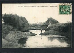 CPA - LA COUARDE SUR MER - Réservoir à Anguilles, Animé - Ile De Ré