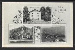 SALUTI DA FAOGNA (FAVOGNA) NON VG. N° B923 - Bolzano