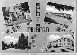CPSM - SALUTI DA PIUBEGA - Multivues - Altre Città