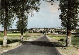 ST ALBAN SUR LIMAGNOLE Route De St Chély D' Apcher - Saint Alban Sur Limagnole