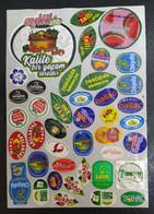 AC - FRUIT LABELS Fruit Label - STICKERS LOT #99 - Frutas Y Legumbres