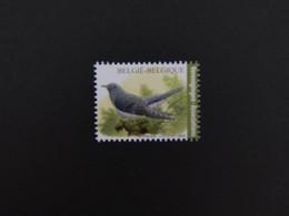 Belgie Vogels , Belgium Birds - Unclassified