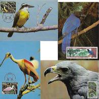 Brazil 1998 / 2014 4 Maximum Card Stamp Fauna Animal Bird - Altri