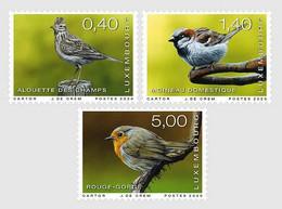 Luxembourg 2020 Set 3  V MNH  Rare Birds Bird Oiseaux Oiseau - Spatzen