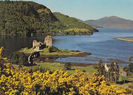 Postcard Eilean Donan Castle Dornie Ross - Shire  [ Clan MacRea Interest ] My Ref B25068MD - Ross & Cromarty
