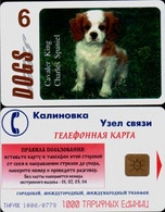 ISRAEL Phonecards BREEDS Of DOGS Telephone Telefon Card Dog Breeds телефонные карты породы собак 13 CARDS** - Cani