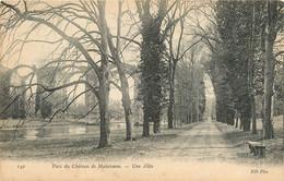 CPA Château De Maintenon-Une Allée   L884 - Maintenon