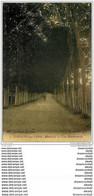 50 TORIGNI-SUR-VIRE. Cycliste Sur Les Boulevards 1931. Petit Défaut - Zonder Classificatie