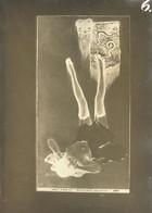 Kirchner, Raphael Le Masque Impassible Auf Altem Glasnegativ Um 1900 18 X 13 Cm I-II - Kirchner, Raphael