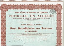 ALGERIE. PETROLES EN ALGERIE. Voir La Description.   Lot De 2 - Altri
