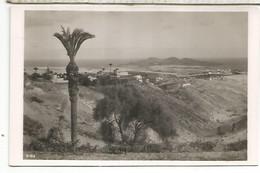 CANARIAS LAS PALMAS  SIN ESCRIBIR - Gran Canaria